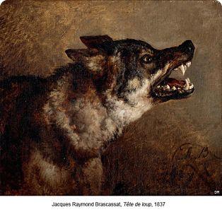 Jacques Raymond Brascassat, Tête de loup,1837