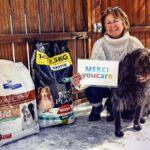 YouCare: le moteur de recherche qui offre des repas aux animaux abandonnés