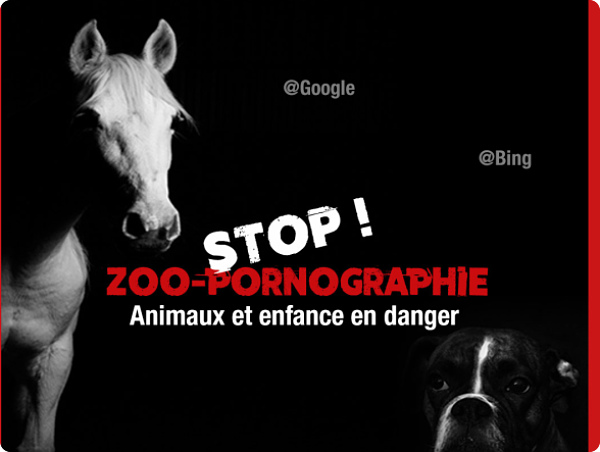 Animal Cross lance l'alerte sur la zoophilie en France