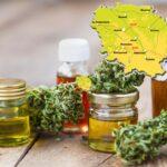 Cannabis thérapeutique : lancement d'une consultation citoyenne en ligne