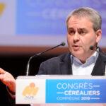 Election régionale Hauts-de-France : LMR appelle à voter pour Xavier Bertrand